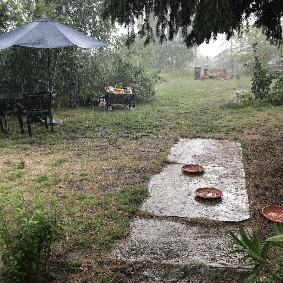 Eichof plötzlich Regen